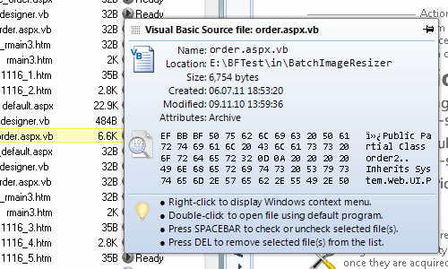 File tooltips provide valualble information about files in the processing list
