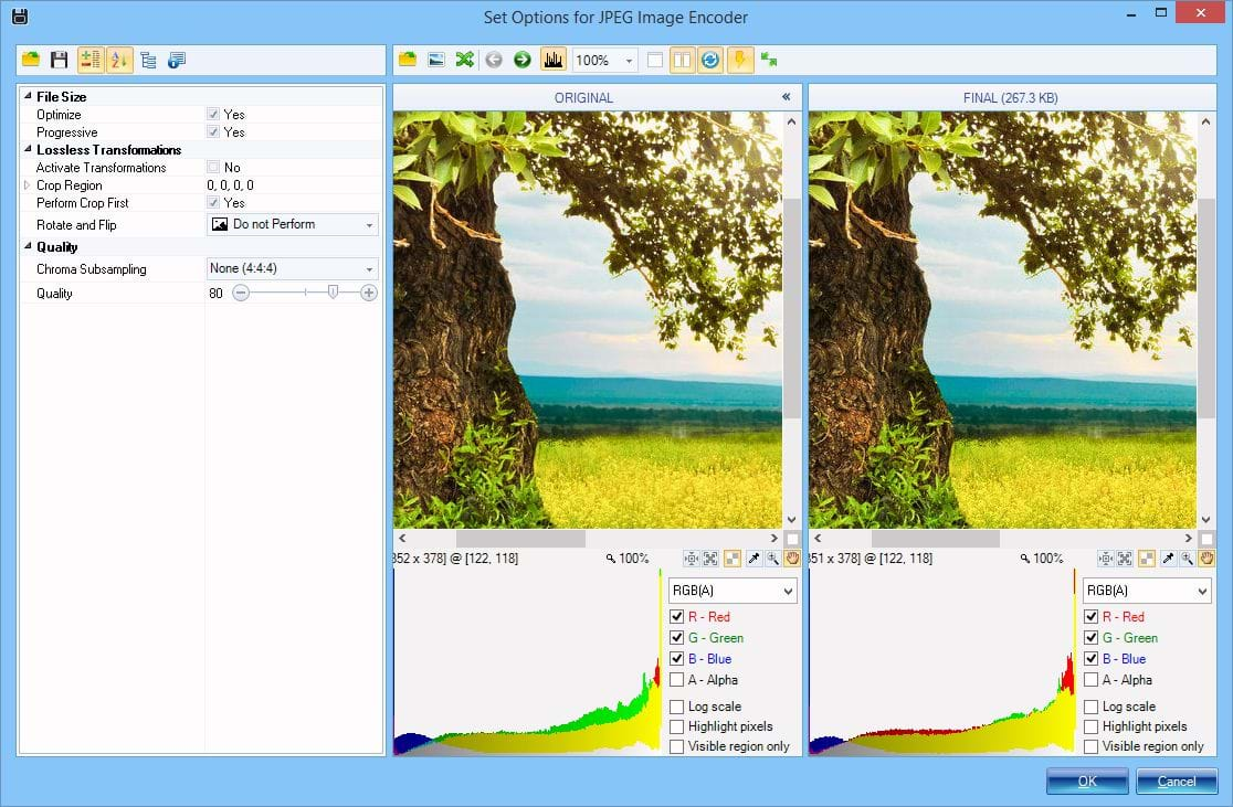 Preview Image Format Options