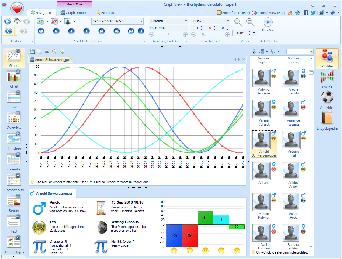Biorhythms Calculator Main Window